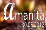 Folder do Evento: Amanita