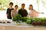 Folder do Evento: Feira de Transição Agroecológica e Orgânicos