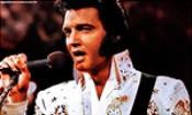 Folder do Evento: Elvis Forever Fan Club