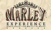Folder do Evento: Mato Seco - Marley Experience