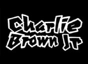 Folder do Evento: Tributo a Charlie Brown Jr