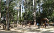 Parque Natural Chico Mendes