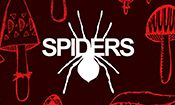 Folder do Evento: Spiders com Escarlatina Obsessiva + Pist
