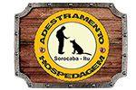 Zé Cães Adestramento e Hospedagem