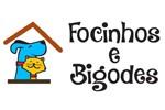Hotel Creche para cães e gatos Focinhos e Bigodes - Sorocaba