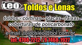 topo_leo