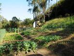 Terrenos à Venda prontos para construir em Condomínio de São Roque - SP