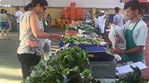 Feira Orgânica acontece nesta quarta no Mercado Distrital