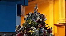 Romaria de Aparecidinha leva mais de 50 mil pessoas ao Santuário